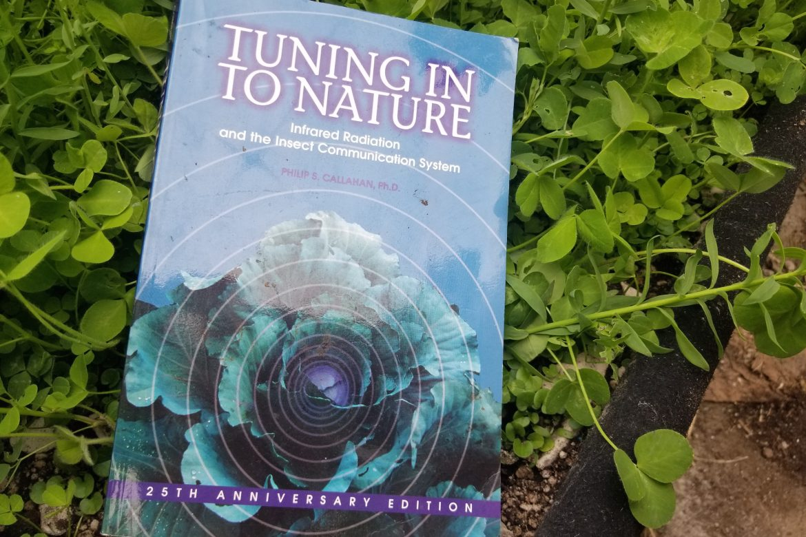 tuning-into-nature